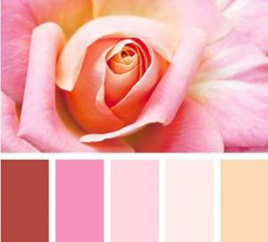 оттенки розового в дизайне помещений